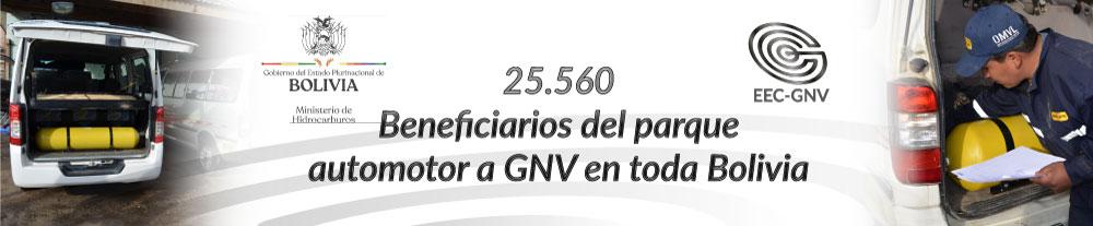 1000x207GNV03